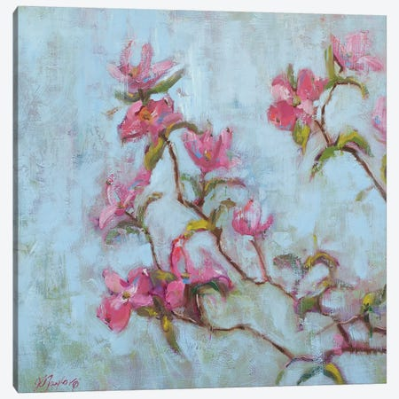 Pink Dogwood Canvas Print #STT53} by Jennifer Stottle Taylor Canvas Wall Art