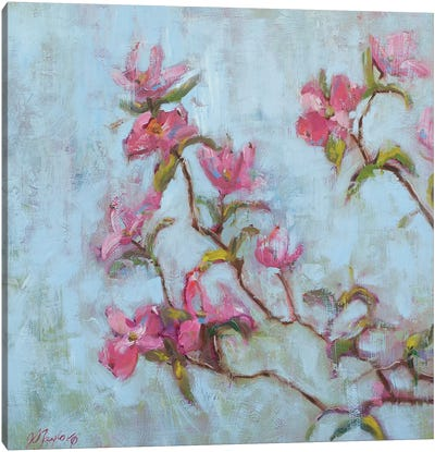 Pink Dogwood Canvas Art Print
