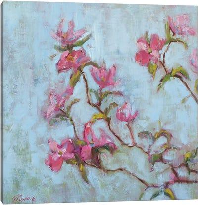 Pink Dogwood Canvas Art Print