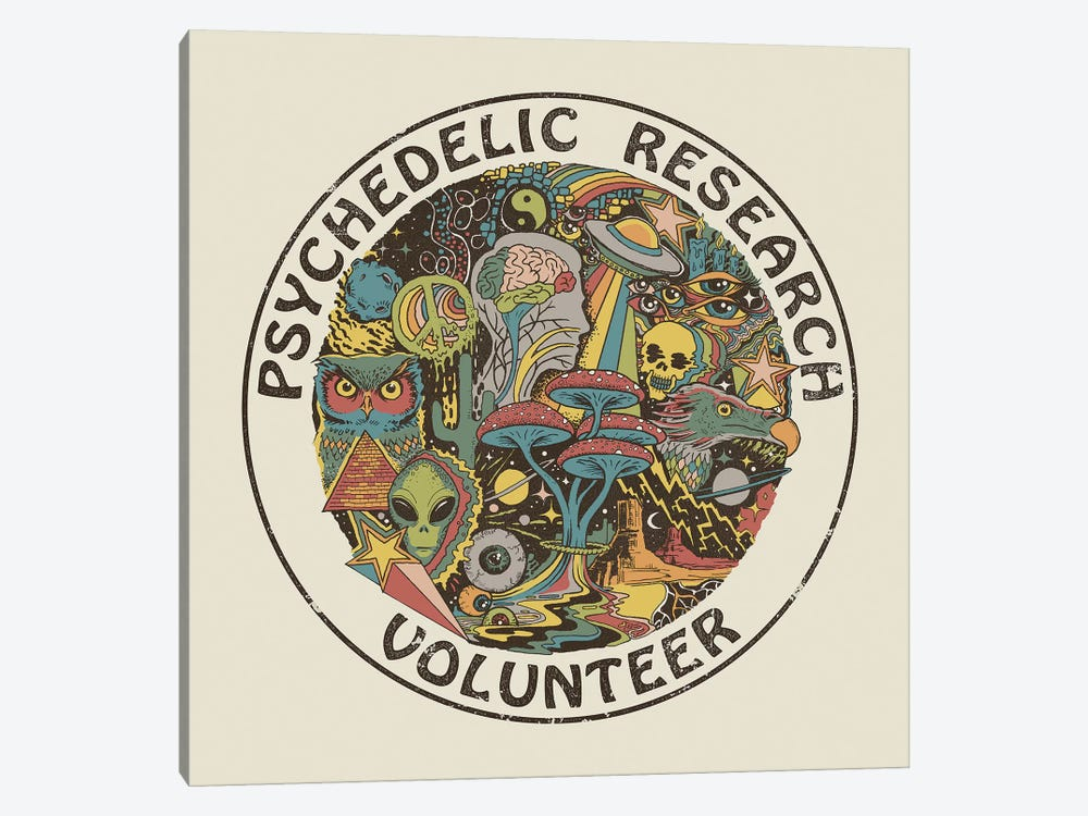 Psychedelic Research Volunteer by Steven Rhodes 1-piece Canvas Artwork