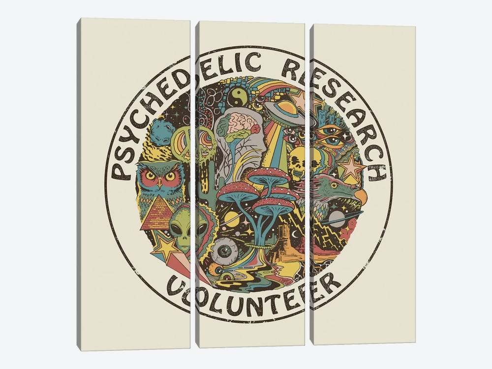 Psychedelic Research Volunteer by Steven Rhodes 3-piece Canvas Wall Art