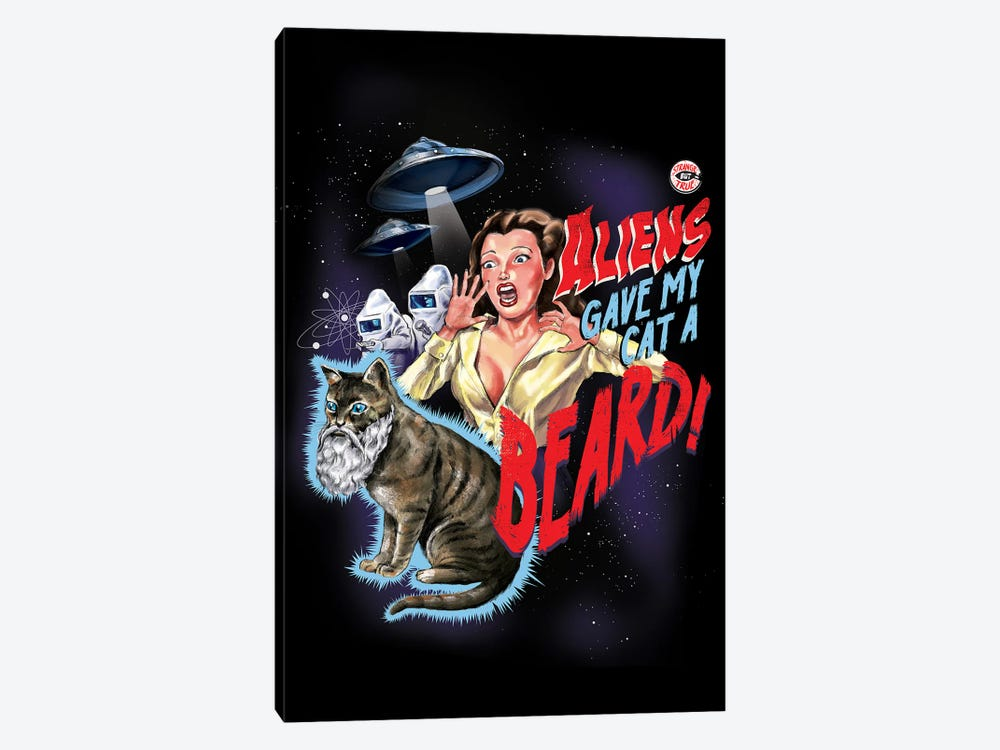 Aliens Gave My Cat A Beard by Steven Rhodes 1-piece Canvas Wall Art