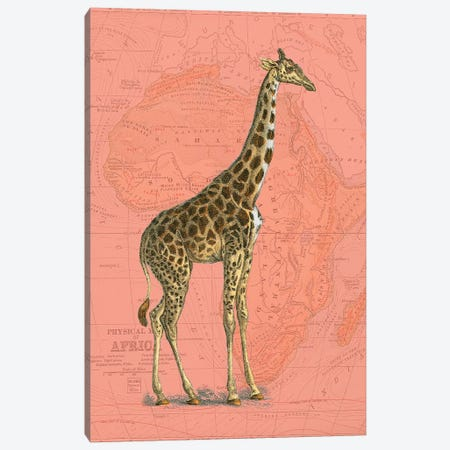 African Animals on Coral I Canvas Print #STW102} by Studio W Canvas Print