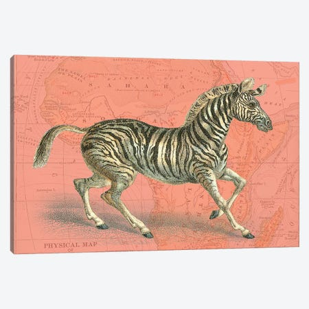 African Animals on Coral III Canvas Print #STW104} by Studio W Canvas Art