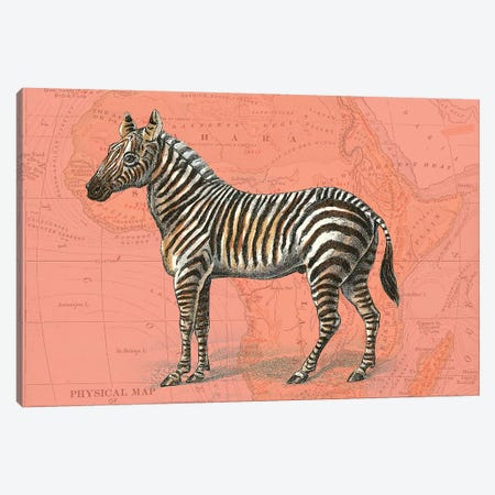African Animals on Coral IV Canvas Print #STW105} by Studio W Canvas Artwork