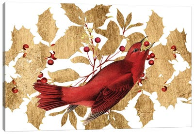 Red Bird Christmas Collection D Canvas Art Print