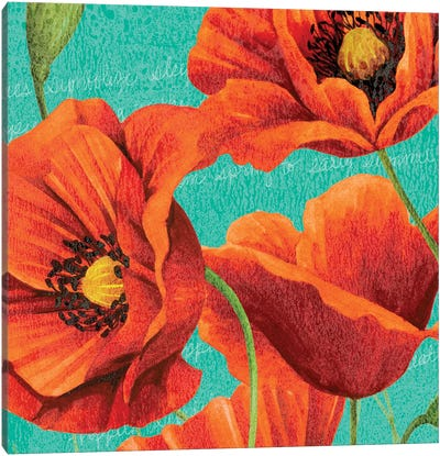 Red Poppies on Teal I Canvas Art Print