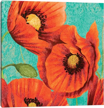 Red Poppies on Teal II Canvas Art Print