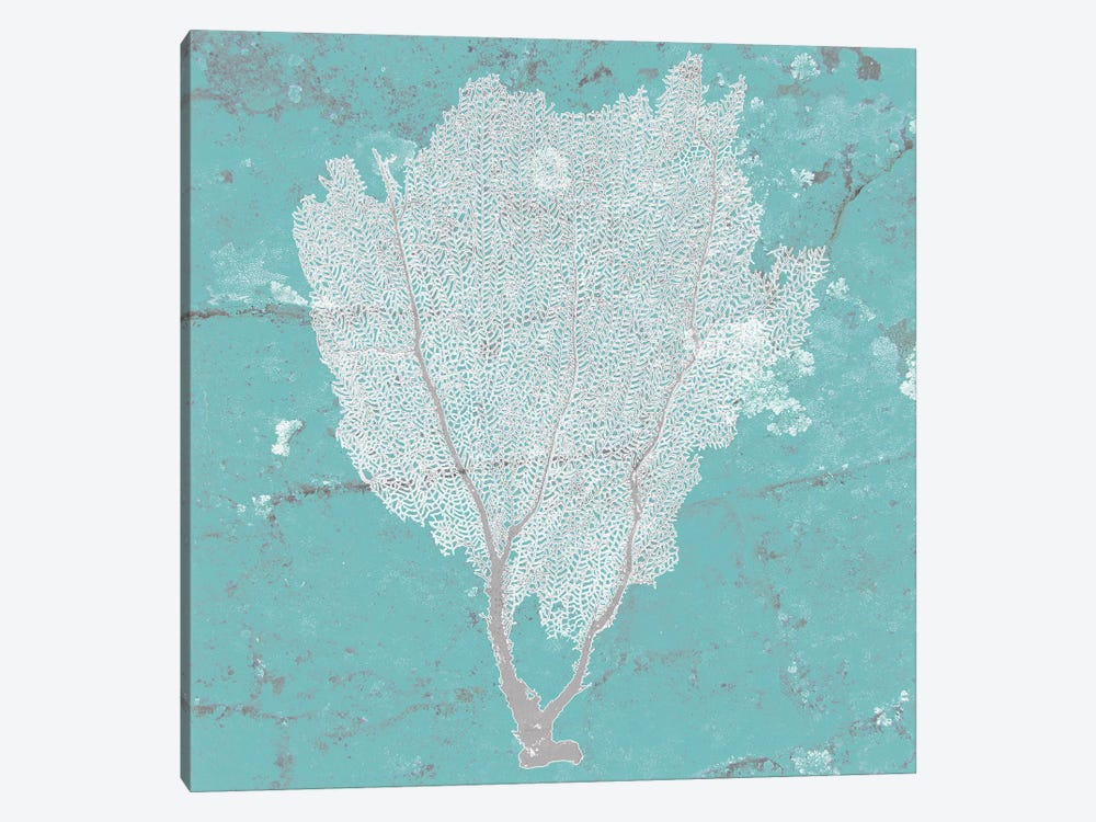 Graphic Sea Fan I by Studio W 1-piece Canvas Art