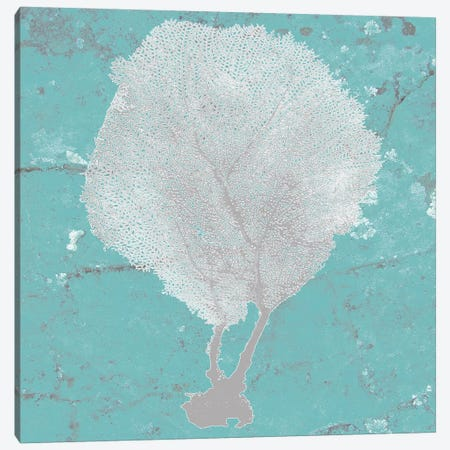 Graphic Sea Fan II Canvas Print #STW20} by Studio W Canvas Wall Art