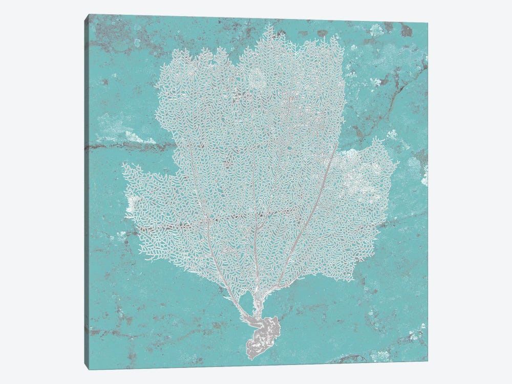 Graphic Sea Fan III by Studio W 1-piece Art Print