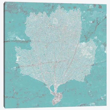 Graphic Sea Fan III Canvas Print #STW21} by Studio W Canvas Artwork