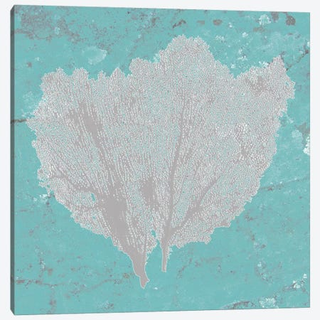 Graphic Sea Fan IV Canvas Print #STW22} by Studio W Canvas Wall Art