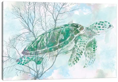 Watercolor Sea Turtle I Canvas Print #STW43