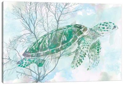 Watercolor Sea Turtle I Canvas Art Print