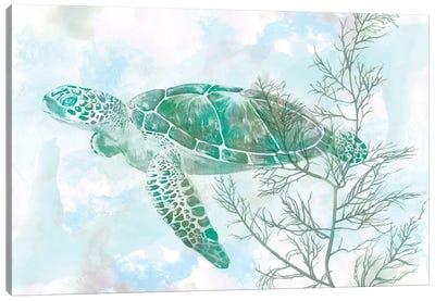 Watercolor Sea Turtle II Canvas Art Print