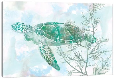 Watercolor Sea Turtle II Canvas Print #STW44