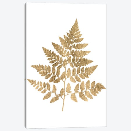 Graphic Gold Fern I Canvas Print #STW7} by Studio W Art Print