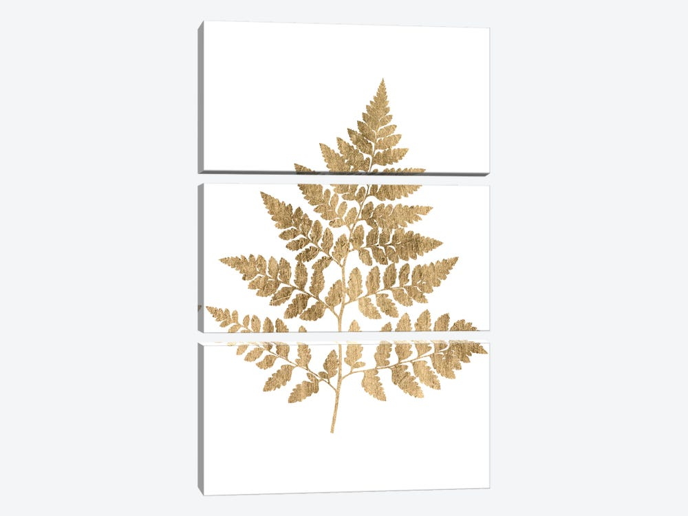 Graphic Gold Fern I by Studio W 3-piece Canvas Art Print