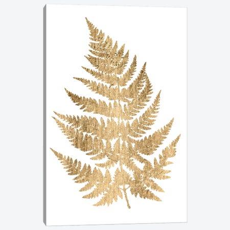 Graphic Gold Fern IV Canvas Print #STW8} by Studio W Canvas Artwork