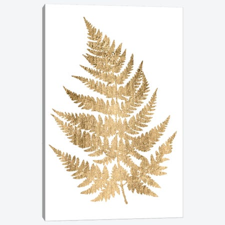 Graphic Gold Fern IV Canvas Print #STW8} by Studio W Canvas Artwork