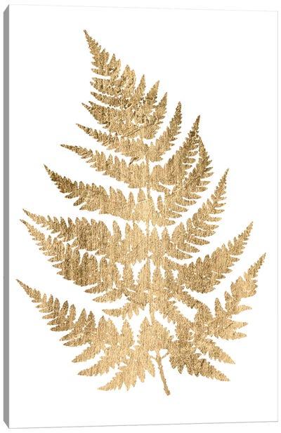 Graphic Gold Fern IV Canvas Art Print