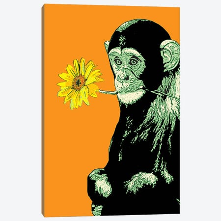 Flower Monkey Canvas Print #STZ31} by Steez Canvas Art
