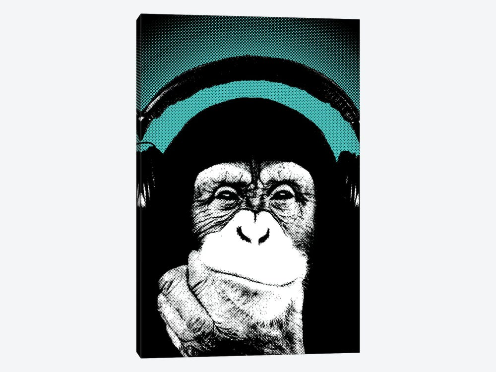 Monkey BL II by Steez 1-piece Canvas Wall Art