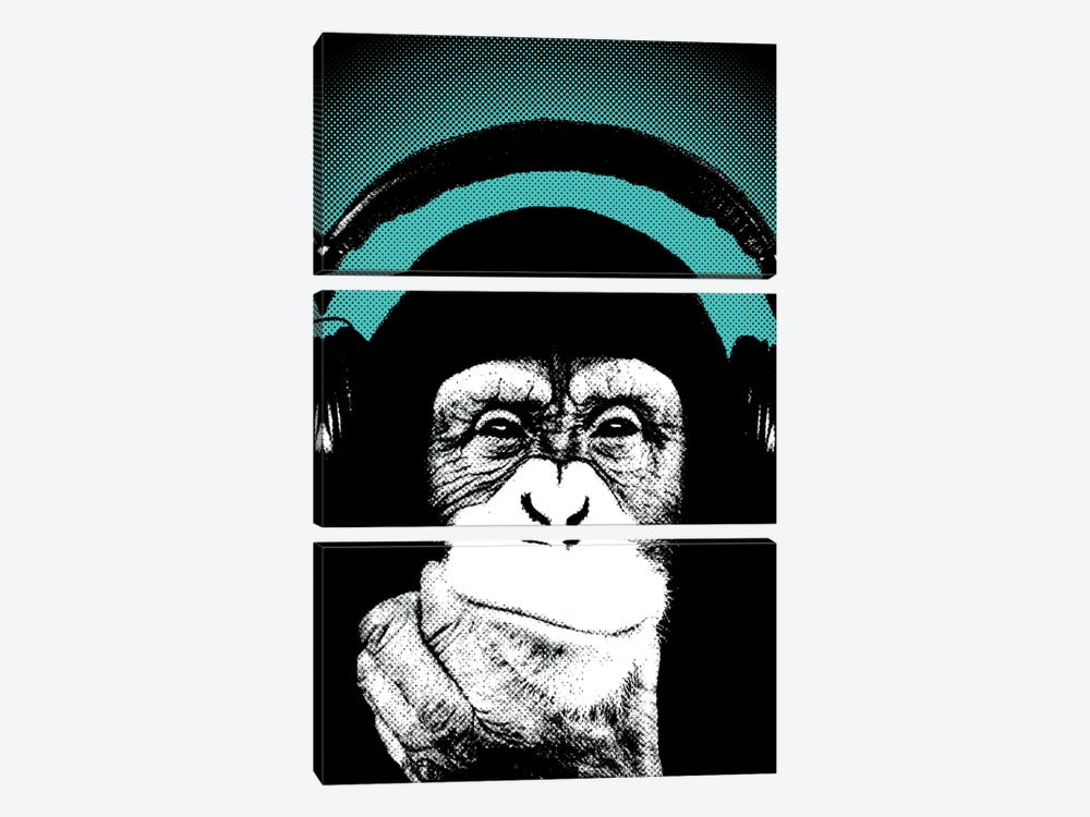 Monkey BL II by Steez 3-piece Canvas Art