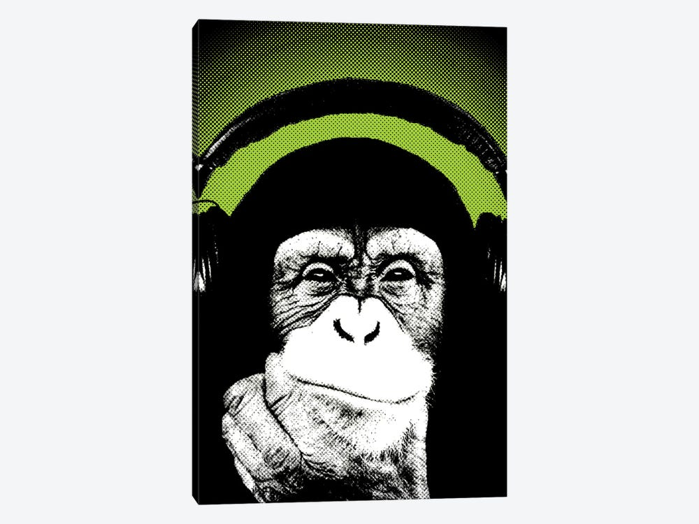 Monkey BL III by Steez 1-piece Canvas Print