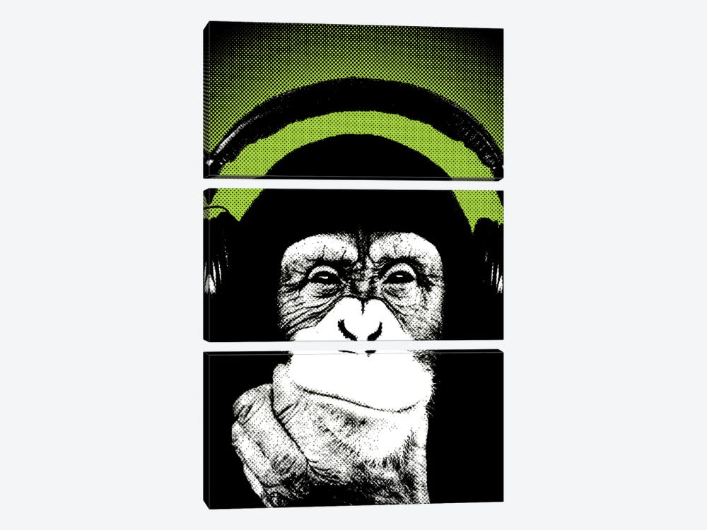 Monkey BL III by Steez 3-piece Canvas Art Print