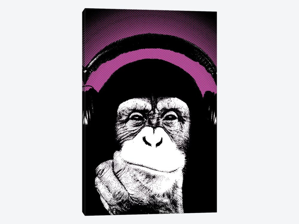 Monkey BL IV by Steez 1-piece Canvas Art