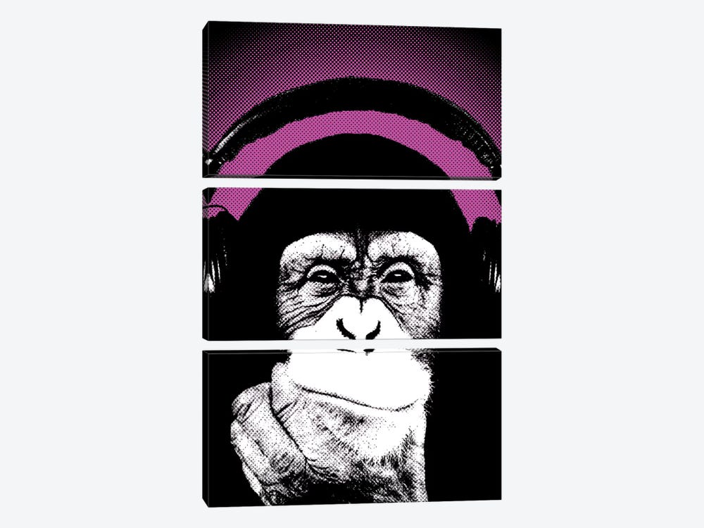 Monkey BL IV by Steez 3-piece Canvas Art