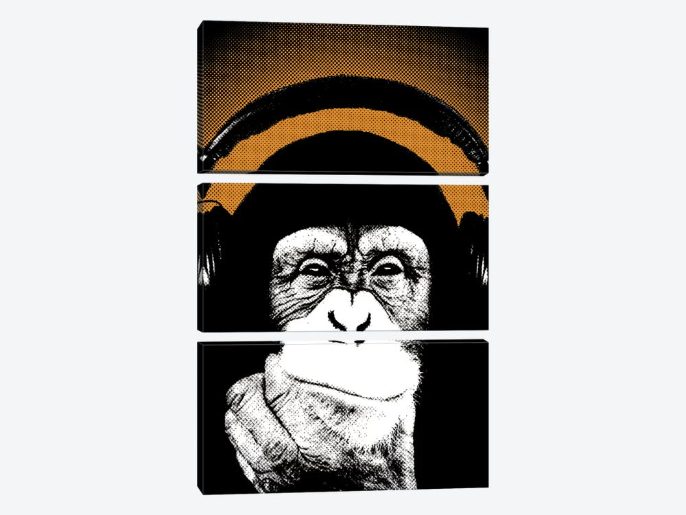 Monkey BL V by Steez 3-piece Canvas Print