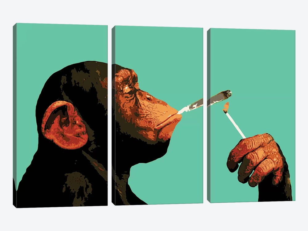 Monkey Joint Time by Steez 3-piece Canvas Art