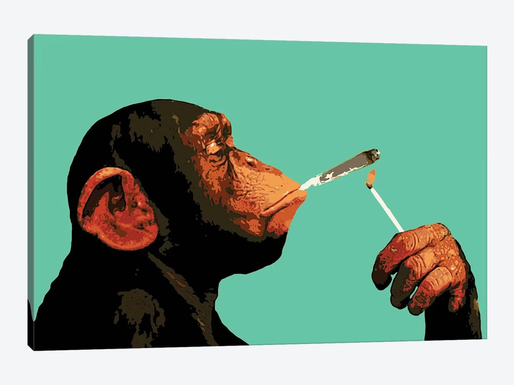 Monkey Joint Time by Steez 1-piece Canvas Artwork