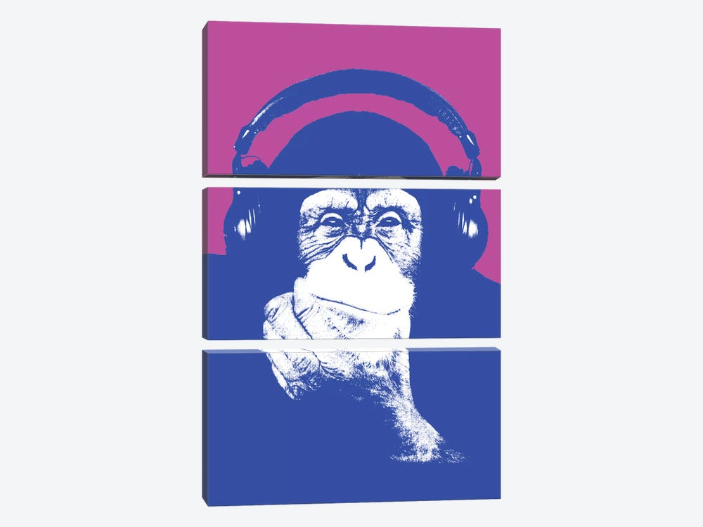 New Monkey Head I 3-piece Canvas Artwork