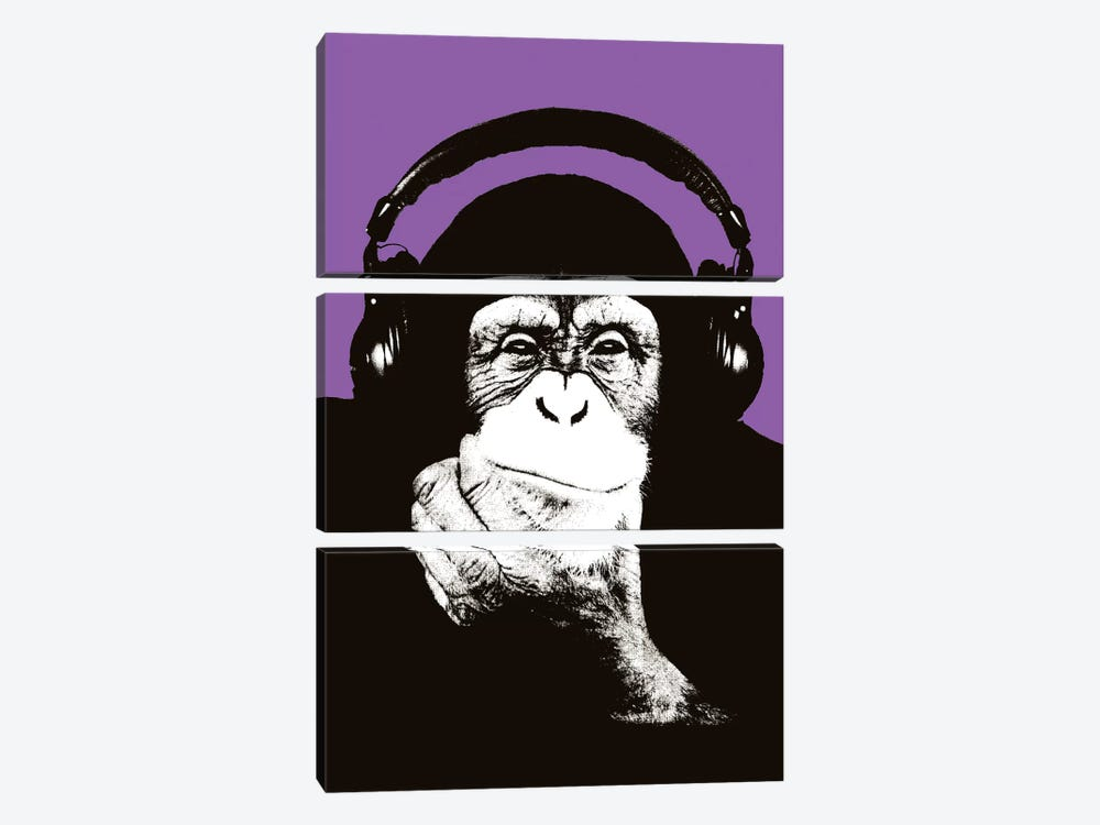 New Monkey Head IX by Steez 3-piece Art Print
