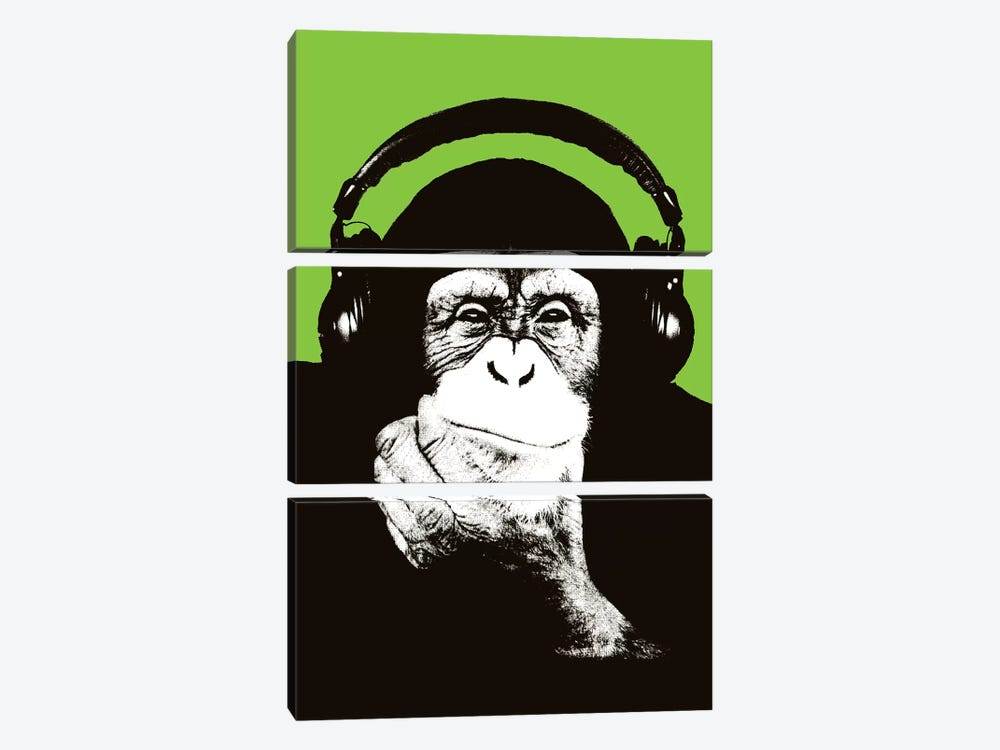 New Monkey Head VI by Steez 3-piece Canvas Print