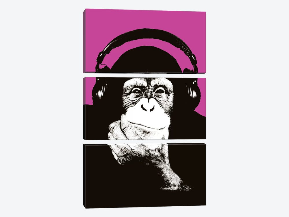 New Monkey Head VII by Steez 3-piece Art Print