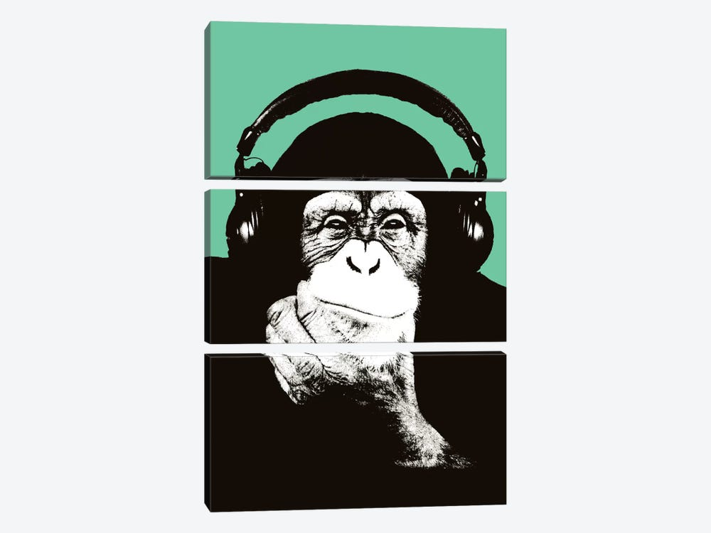 New Monkey Head VIII by Steez 3-piece Canvas Art