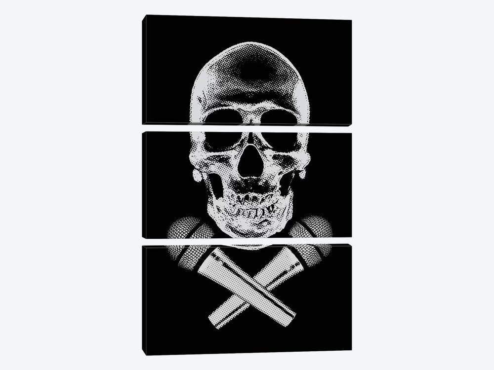 Skullz by Steez 3-piece Canvas Artwork