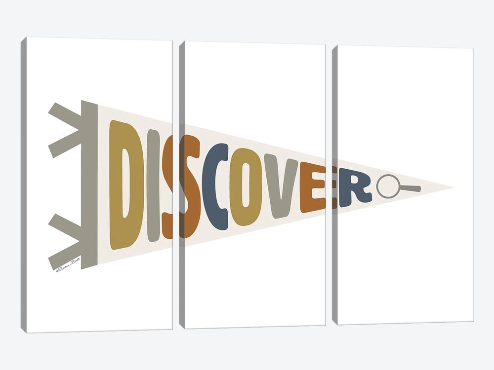 Discover Pennant by Susan Ball 3-piece Art Print