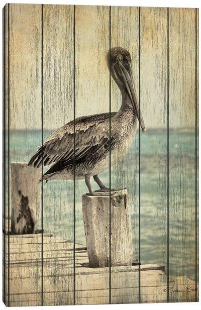 Vintage Pelican I  Canvas Art Print