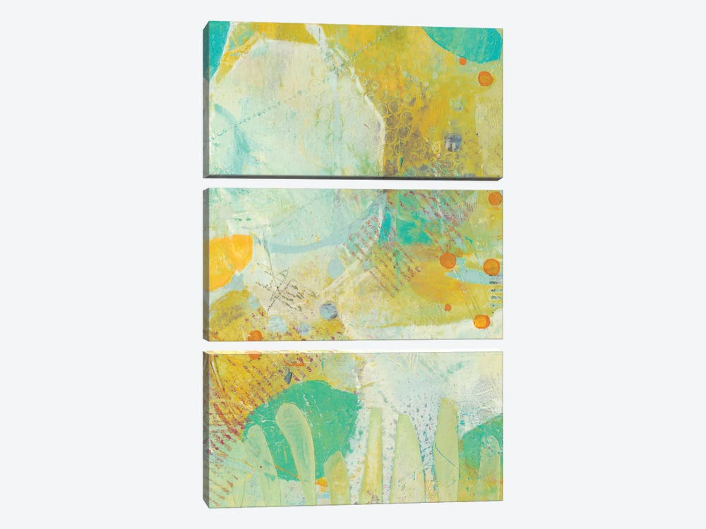 Wim I by Sue Jachimiec 3-piece Canvas Artwork