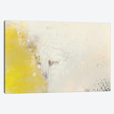 Yellow Lux I Canvas Print #SUE105} by Sue Jachimiec Canvas Art