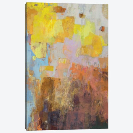 Mazed Canvas Print #SUE204} by Sue Jachimiec Art Print