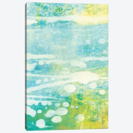 Lacuna IV Canvas Print #SUE74} by Sue Jachimiec Canvas Print