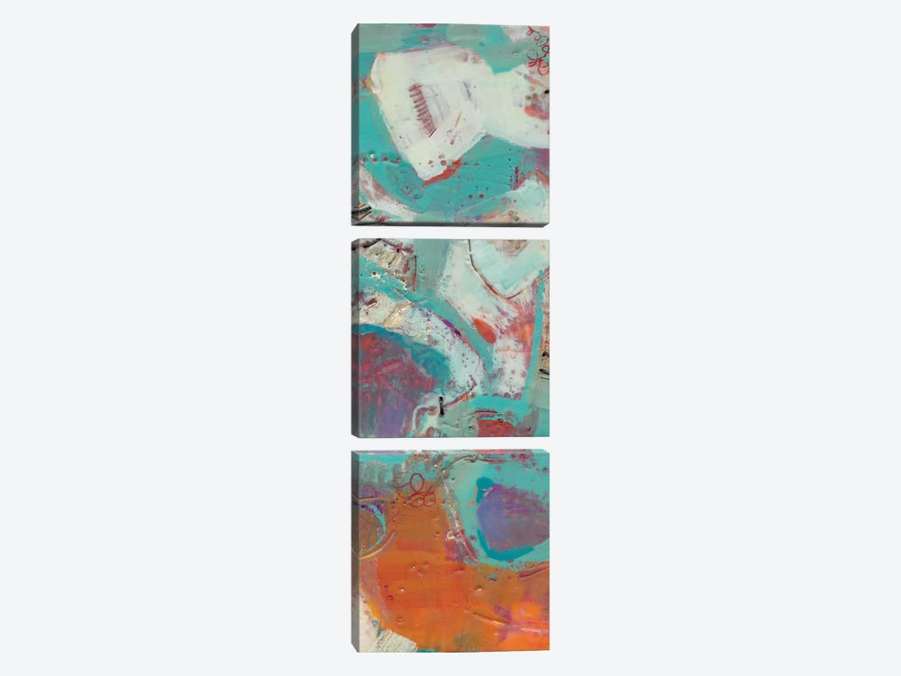 Lolly III by Sue Jachimiec 3-piece Canvas Art