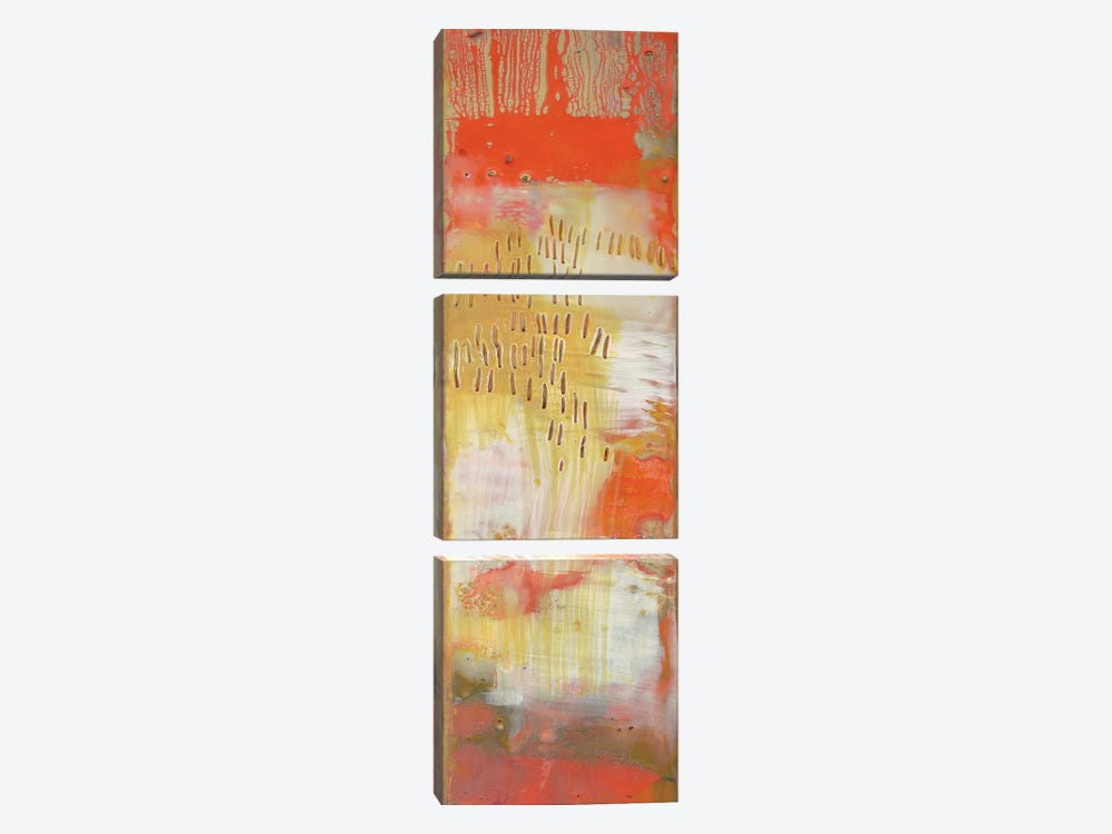 Reedy I by Sue Jachimiec 3-piece Canvas Artwork